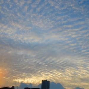 横浜に秋が来たあー