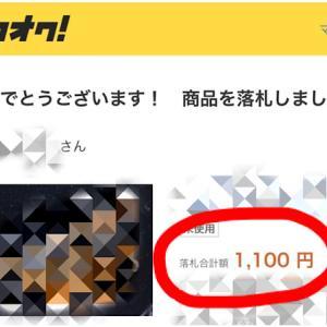 1000円以下で落札出来るか挑戦した結果