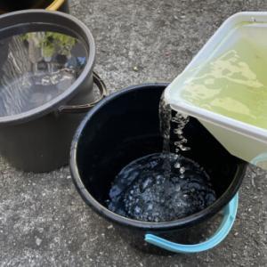 病気になりにくい水替え