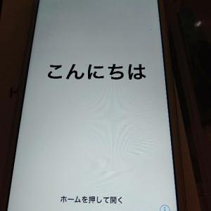 iphoneのネジ、ゴマより小さい。