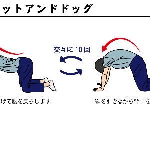 膝と姿勢について