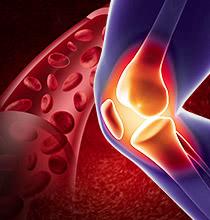 ひざ再生医療 取材を受けました‼