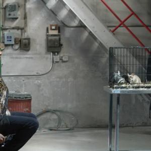 ブラックリスト/THE BLACKLIST シーズン6 14話「オスターマン・アンブレラ社/THE OSTERMAN UMBRELLA COMPANY (NO. 6)」