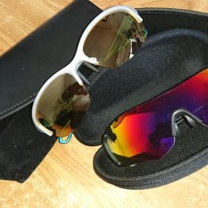 SWANSのサングラス
