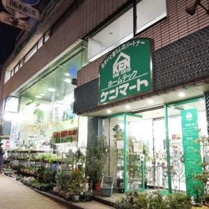 ~園芸店を巡って~大田区の「ガーデニングセンター ケンマート」に行ってきました