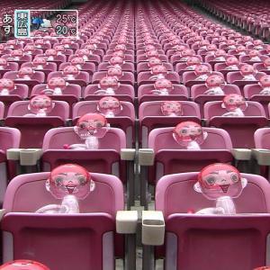 【カープチケット】マツダスタジアムの一般客の入場は8月7日から・内野自由席は指定席に変更