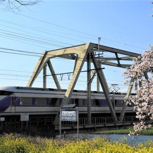 満開の新開橋。