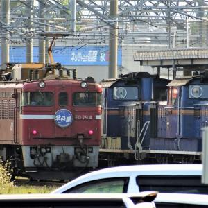 (掘り鉄)寝台特急北斗星 まるで寝台列車の展示会!