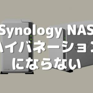 Synology NASがHDDハイバネーションにならない【DS220j】
