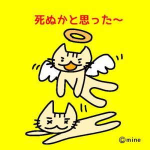 【聖闘士星矢 海皇覚醒】やっと不屈解放!平均を超える方法は!?【後編】