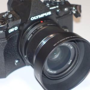 【レビュー】M.ZUIKO DIGITAL 25mm F1.8 寄れてボケる万能レンズ