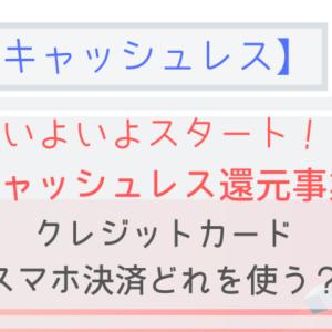 【キャッシュレス還元事業】スマホ決済・クレジットカード使い分けガイド