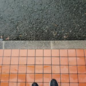 小雨の20km走