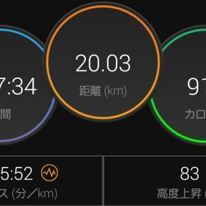 20kmペース走🏃