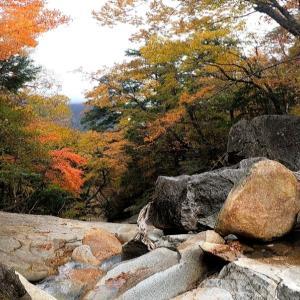 パックン岩を見てきました