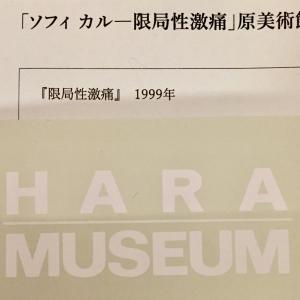 閉館迫る原美術館が、約20年前のソフィカルのあの名作を再現展示。見れるのはあと一ヶ月のみ。