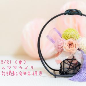 【参加者募集】2/21 むさしのママカメラ部 桃の節句撮影会
