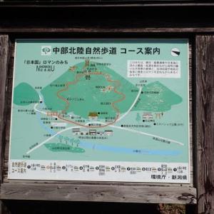 日本国(555.4m) 小俣~蔵王道