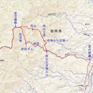 高坪山(570.5m) 西山古道~大又口
