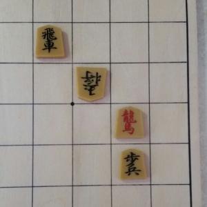 『5手詰ハンドブック』:詰将棋の反省