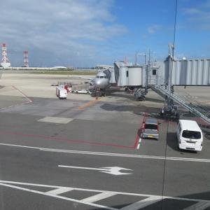 無事帰国、仙台へ
