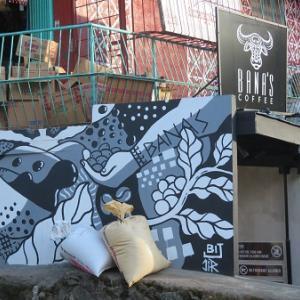 ジャコウネコのコーヒー(フィリピン・サガダ)