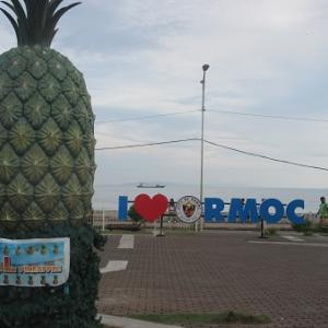 縦十字カットパイナップル(フィリピン・レイテ島)