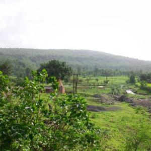 インド日記2012年7月:雨期はドライブの季節