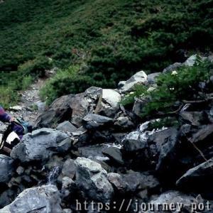 【第8章】北岳から大井川源流、農鳥岳⑤~大井川源流の滴を喉に流し込む~