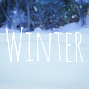 ワードローブ整理✩.*˚2021冬