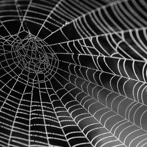プログラミング独学の効率を爆速で上げてくれるサイトを初心者目線で紹介