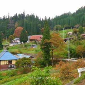 長野県の風景*2019年紅葉巡るドライブ旅-小川村No.2