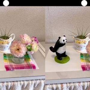 花とパンダの小物の立体視写真でほっこり視力回復トレーニング!