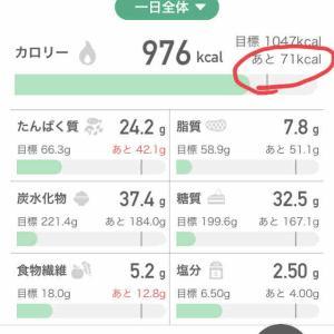 カロミル というアプリ