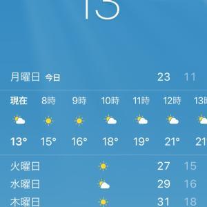 明日から夏日♡