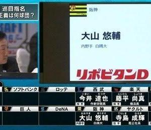 【阪神】世代別構成・台所事情【ドラフト前夜】 201025③