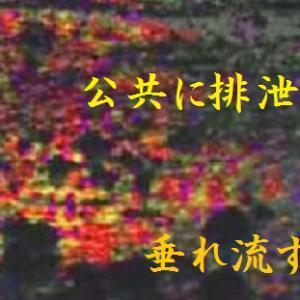 楽山の排泄行進曲