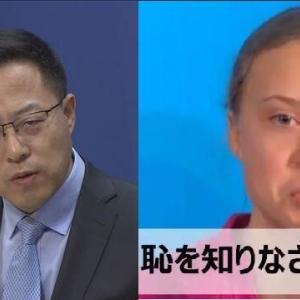 どうしたグレタ? 香港の活動家を支持  中国政府が反発「干渉する権利はない」 ・・・プロレスかw