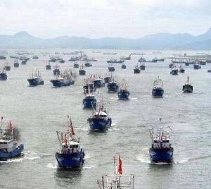 中国人は海鮮を食べてはいけないのか―中国メディア  ・・・足が付いて無いから食べちゃダメー!