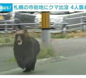 【動画あり】 自衛隊、クマに襲われる!  駐屯地に侵入し隊員が怪我、札幌の市街地にも怪我人