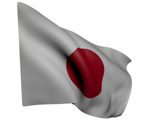 自衛隊演習、28年間で最大規模! 日本はいったい何をしたいのか―中国メディア ・・・元寇への備えです