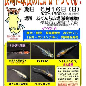 6月16日は長崎へGO!