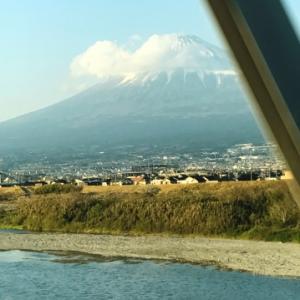 富士川のほとり