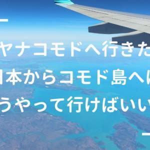 コモド諸島への行き方は? 日本からはジャカルタかバリ島経由がおすすめ!