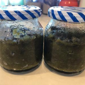 梅シロップが発酵!