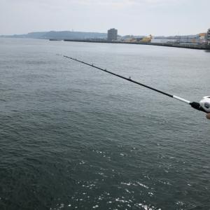 堤防釣りは釣れない・・