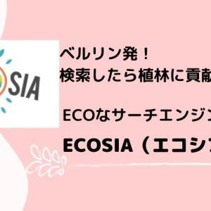【ecosia.org】エコシア?検索したら木が植わる?ドイツ生まれのエコなサーチエンジンがあるよ!
