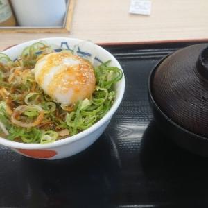 今なら松屋でこれが200円で食べられる!