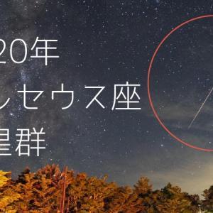 2020年大台ケ原駐車場で見たペルセウス座流星群