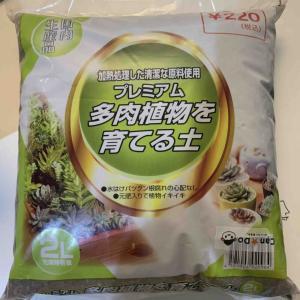 キャンドゥのプレミアム多肉植物を育てる土(220円)の品質は?100円商品と比較も!